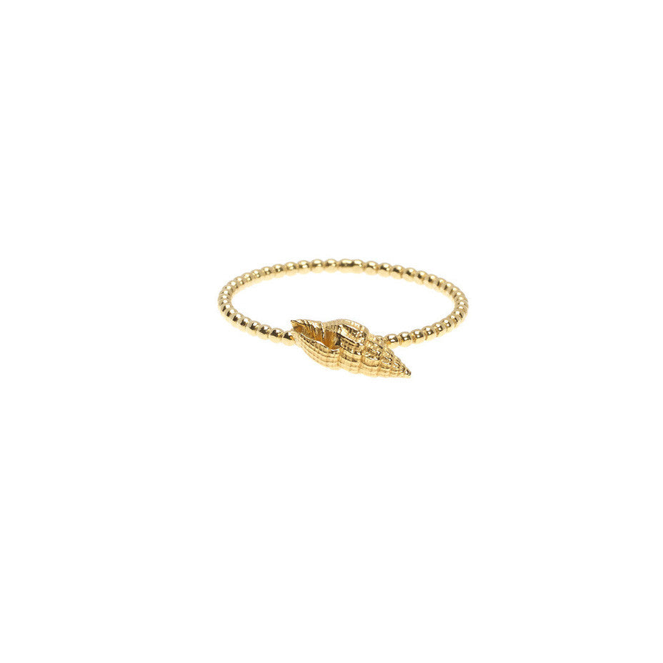 Sound of the Sea Shell ring with beaded band in gold, cast from a real shell.