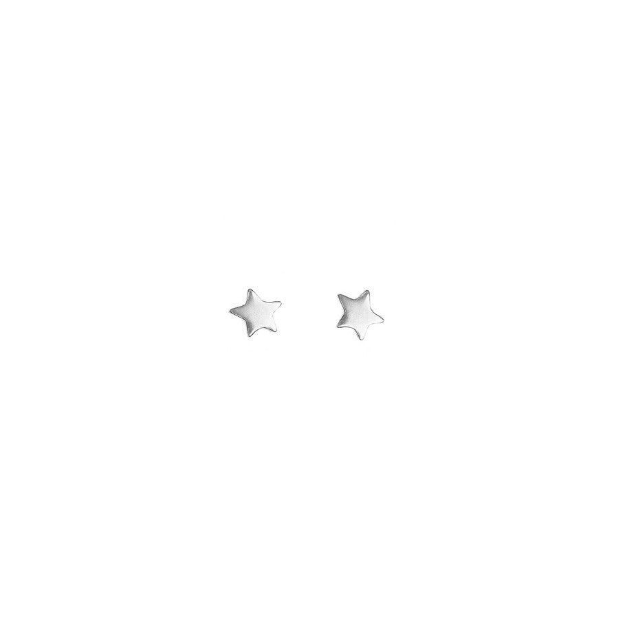 Star Bright Stud earrings in silver.