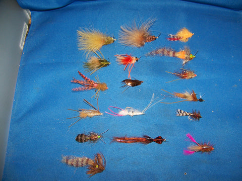 Saltwater Shrimp Fly Patterns from UmpQua and Fly H20 Best Available Redfish, Trout, Bonefish