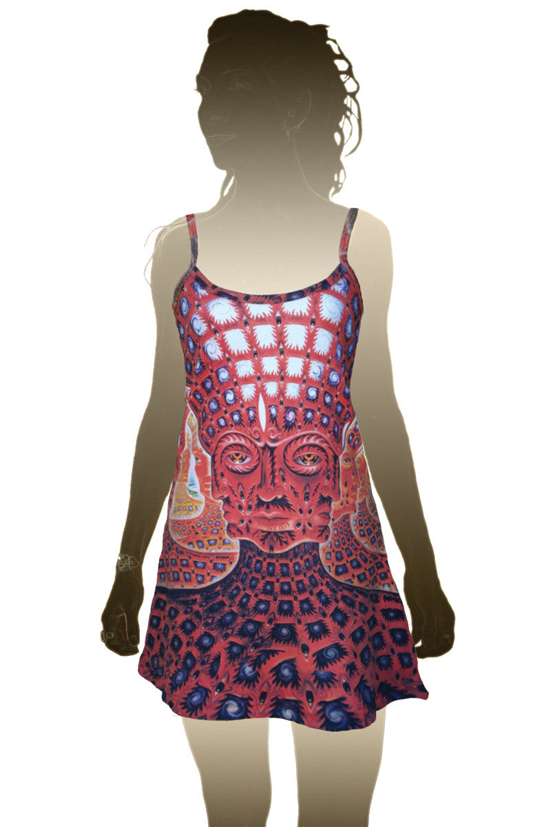 Alex Grey Tool Mini Dress