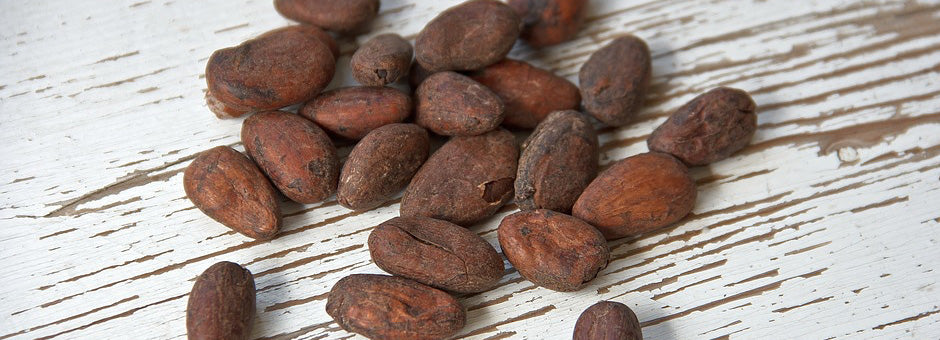 History of Chocolate cocoa beans