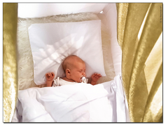 金剛罩電磁波防護垂幕連嬰兒牀(天然色櫸木架) Goldkind Pro® Baby Bed with Shielding Canopy (natural beechwood stand)