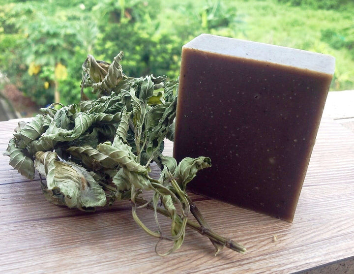 樹懶天然手工皂 - 艾草皂 Tree Sloth All-natural Handmade Soap (Wormwood)