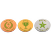 Champion Award Pins (Grades 5-6)