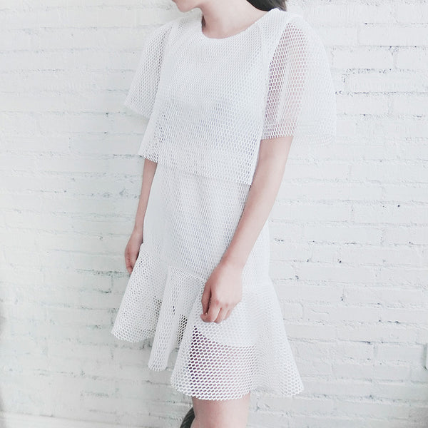 Becca Mesh Combination Dress