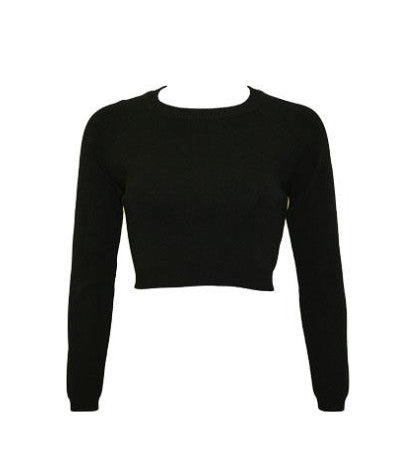 Dylan Long Sleeve Cropped Sweater
