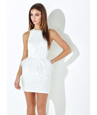 Feather and Lace Dress