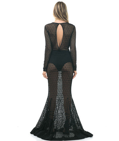 Long Sleeve Mesh Gown