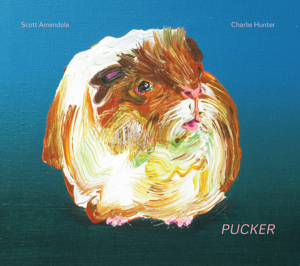 SCOTT AMENDOLA | CHARLIE HUNTER - Pucker CD
