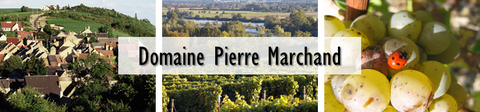 Domaine Pierre Marchand