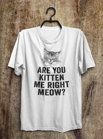 are you kitten  me right meow? t shirt