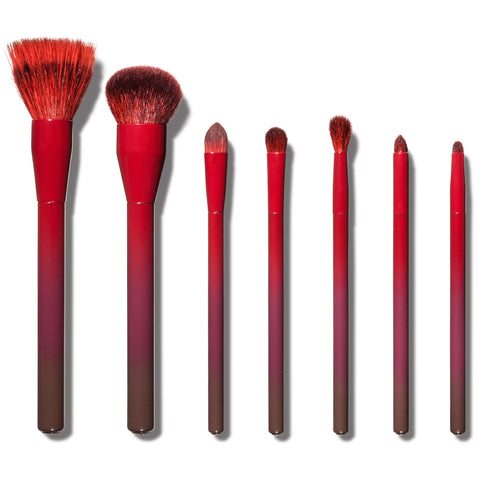 Sonia Kashuk Ombre Obsessed 7 Piece Brush Set (Limited Edition)