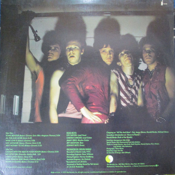 Dead Boys - Young Loud and Snotty - Used LP