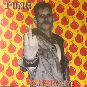 Pung ‎– Danarchy! - Used 7""