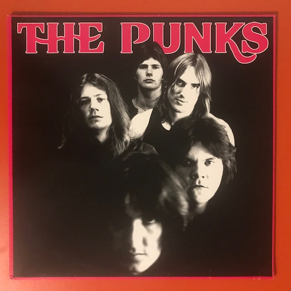 Punks, The – S/T – Used LP