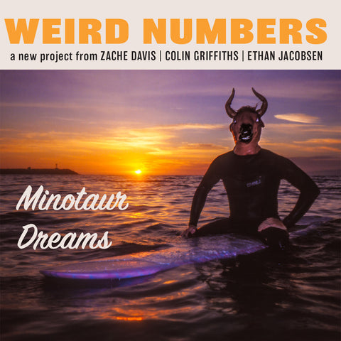 Weird Numbers - Minotaur Dreams - 7""