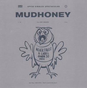 Mudhoney b/w Hot Snakes ‎– One Bad Actor / They Put You Up To This - Used 7""