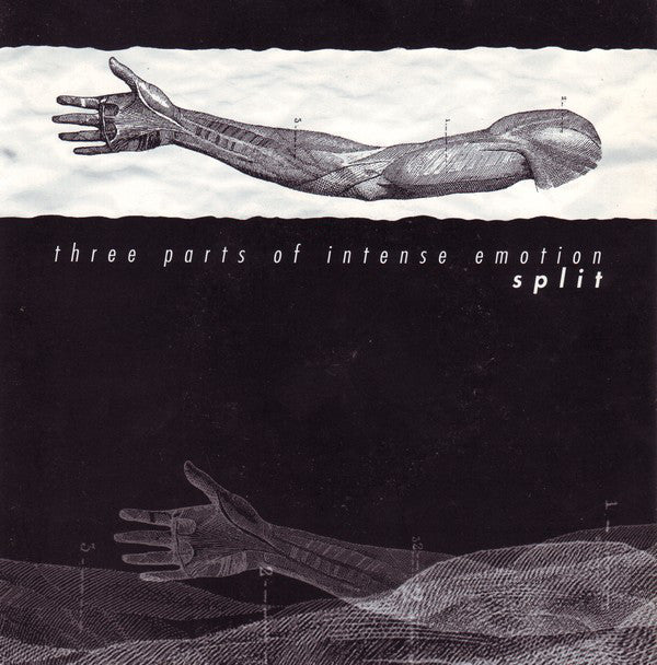 "Springwater / Linsay / Deamons Jaded Passion ‎– Three Parts Of Intense Emotion - Split - 7"" - Used"
