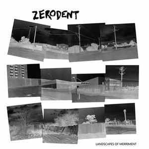 Zerodent - Landscapes of Merriment [IMPORT] GRAY VINYL - New LP