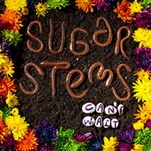 Sugar Stems - Can't Wait - Used LP