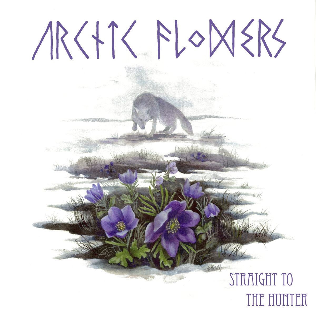 Arctic Flowers - Straight To The Hunter - LP