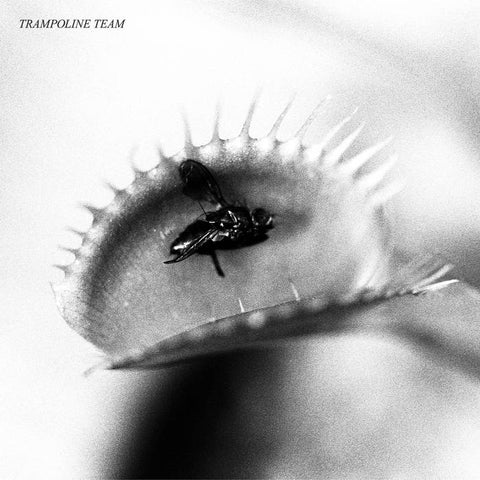 Trampoline Team – S/T – New LP