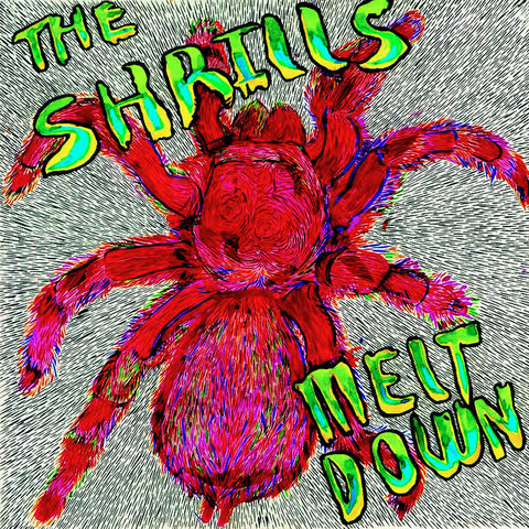 Shrills, the – Meltdown – New LP