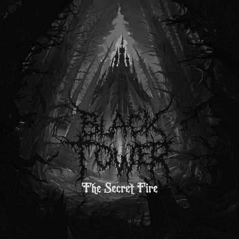 Black Tower - The Secret Fire - Used LP