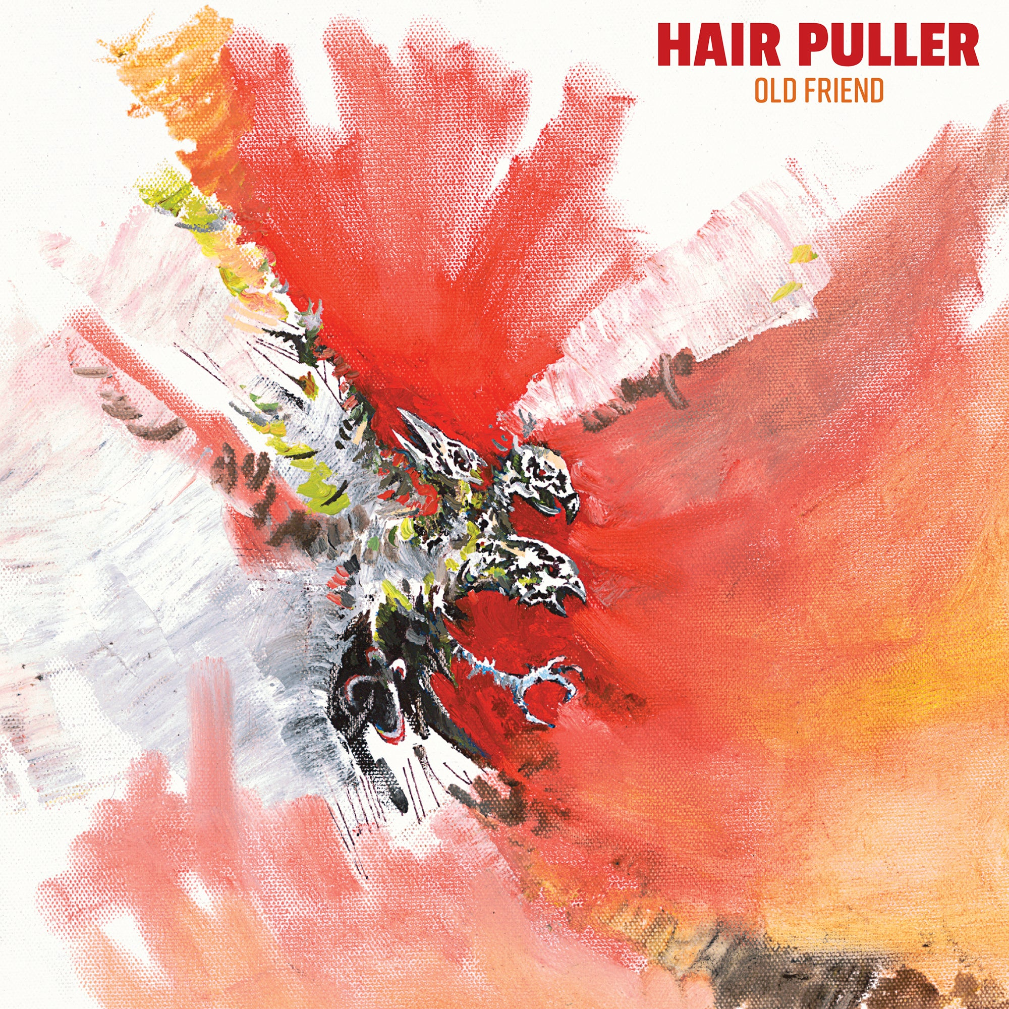 Hair Puller - Old Friend - New LP