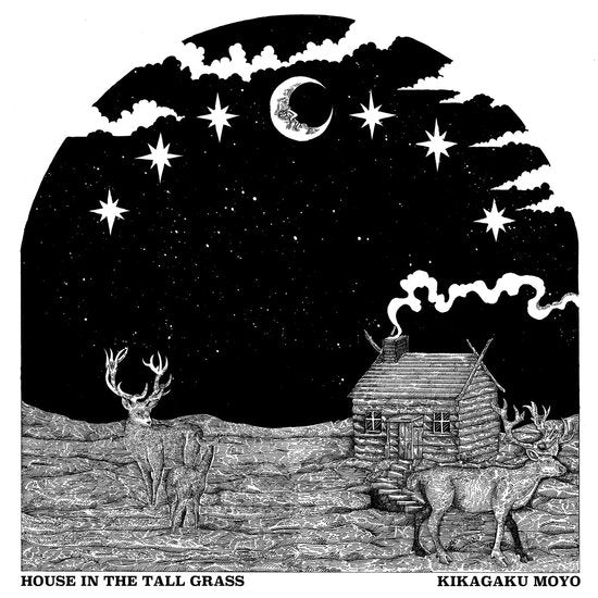 Kikagaku Moyo - House in the Tall Grass - LP