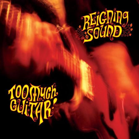 Reigning Sound - Too Much Guitar - New LP