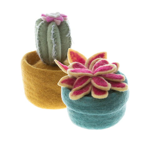 Colorful Felt Decorative Succulent and Cactus hand made in Nepal.