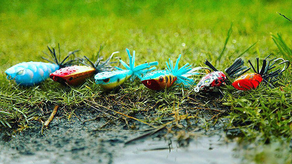 Fishing Topwater Frog Lures — One Stop Marine