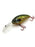 Red Ear Sunfish BD Deep Crank