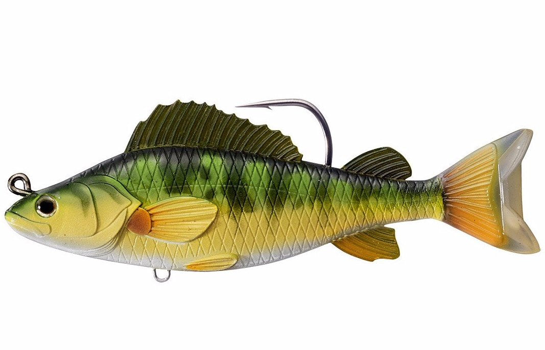Yellow Perch - Live Target