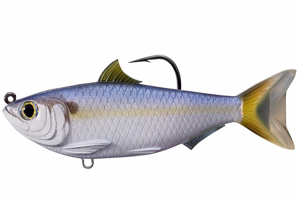 Threadfin Shad 4.5in - Live Target