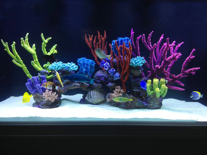 DIY Reef-Loc