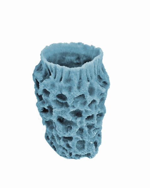 Misc Sponges - Azure Single Tube #51101