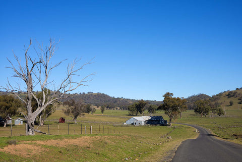 The beautiful Australian countryside is home to nutritious grassfed beef and lamb