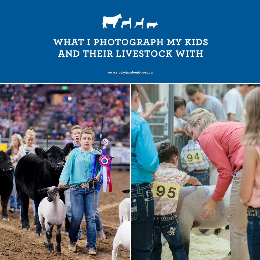 My Recent Stock Quotes: What I Photograph My Kids & Their Livestock With