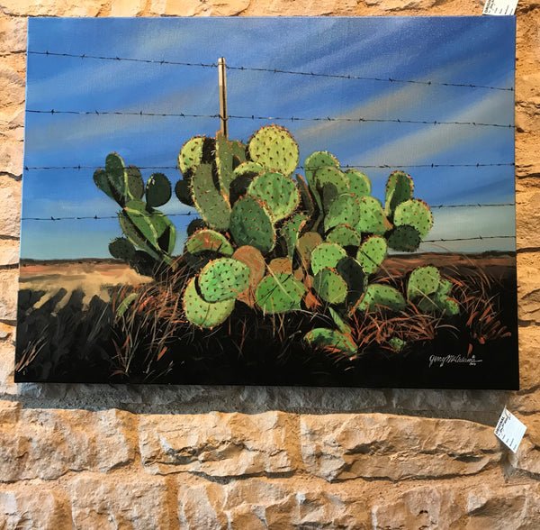 """Late Day Cactus in Fence"" - Jerry McAdams"