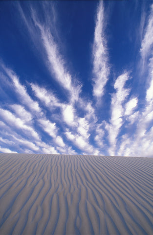 Favorite Forty: Cloud Striated Sand- Wyman Meinzer