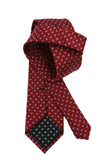 XMI Red Teardrop Paisley Silk Necktie