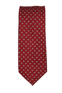 XMI Red Teardrop Paisley Silk Tie