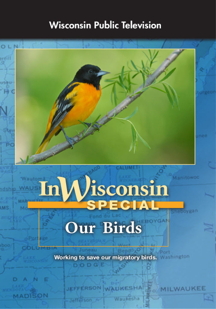 In Wisconsin: Our Birds