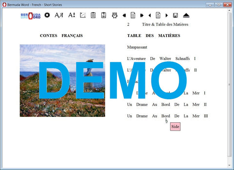 Bermuda-Word-Learn-to-Read-French-Shortstories-Demo