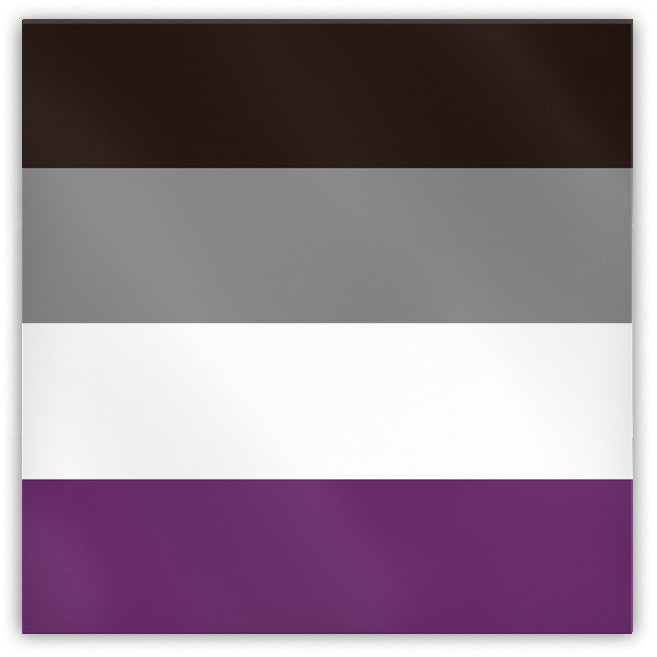Asexual Pride Flag Magnet - Domestic Platypus