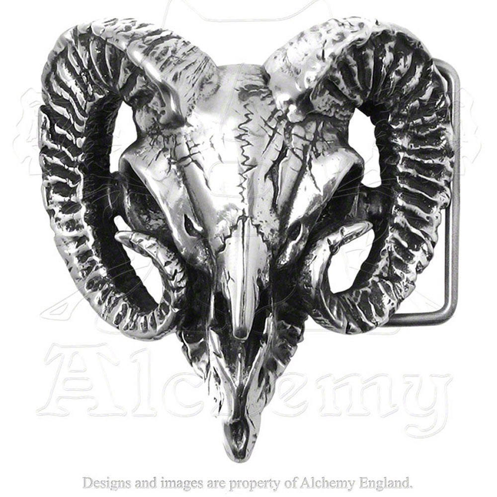 Alchemy Gothic RAM'S SKULL Belt Buckle - Domestic Platypus
