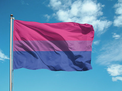 Bisexual Pride Flag - Domestic Platypus