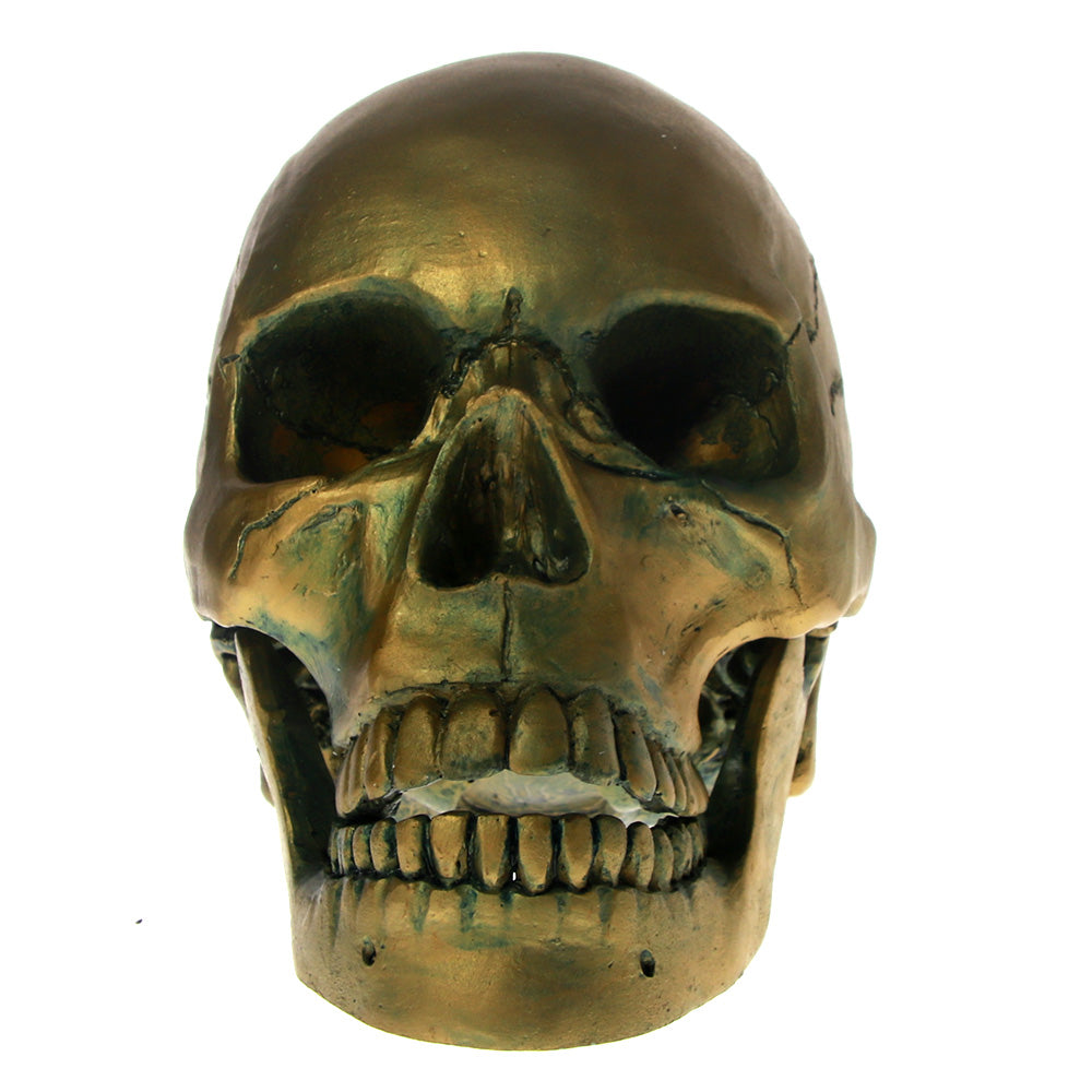 Lifesize Antique Bronze Finish Skull